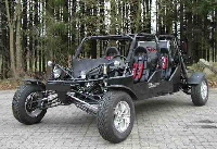 buggy utv. Black Bedroom Furniture Sets. Home Design Ideas